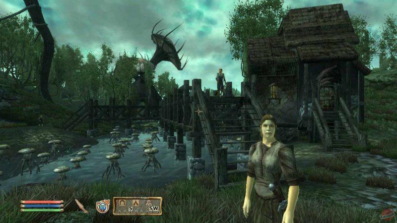 The Elder Scrolls IV Oblivion